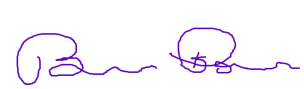 Author signature.png